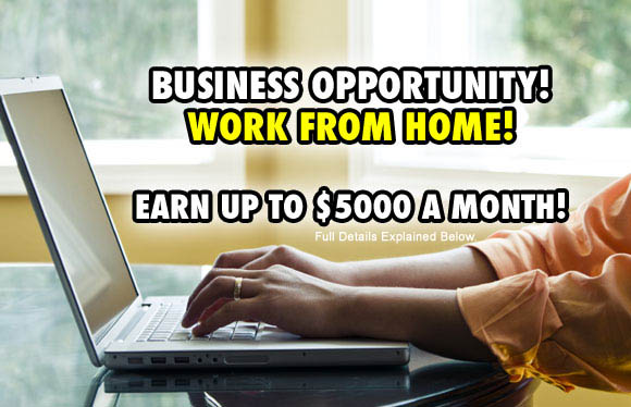 Business Opportunity: Work From Home!