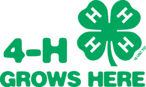 4-H Fundraisers